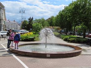 Photo: A very cool dandilion fountain