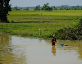 Photo: Woman Fishing with rice field in background