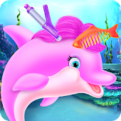 Cute Dolphin Caring and Dressup