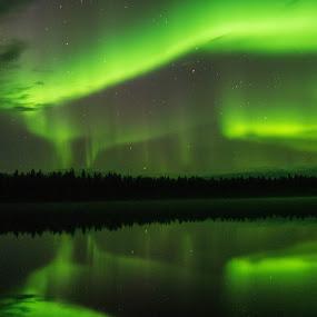 Aurora 2 by Ricky Friskilæ - Landscapes Starscapes ( #autumn, #grustakvatn, #pasvik, #elgjakt, #moosehunt )