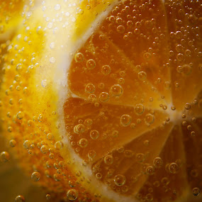 Sparkling Lemonslices by Angelika Sauer - Food & Drink Fruits & Vegetables ( cool, fruits, bubbles, yellow, close up, ingredients, sparkling water, macro, tasty, fresh, food, drink, lemon )