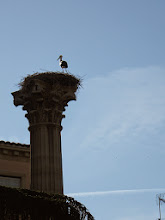 Photo: La cigogne de service!