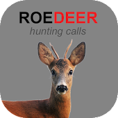 Roe Deer Calls and Deer Sounds
