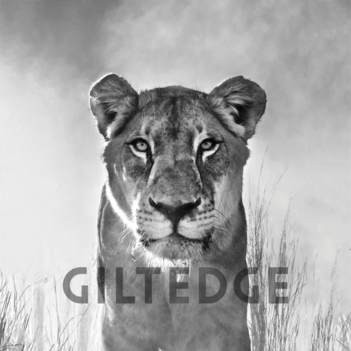 online cougar iz Južne Afrike