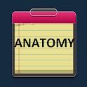 Anatomy Study Guide icon