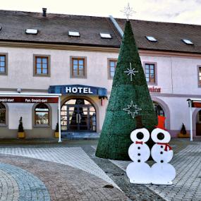 by Branka Radmanić - Public Holidays New Year's Eve