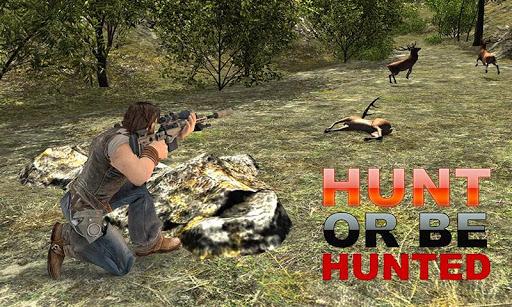 野生鹿狩猎