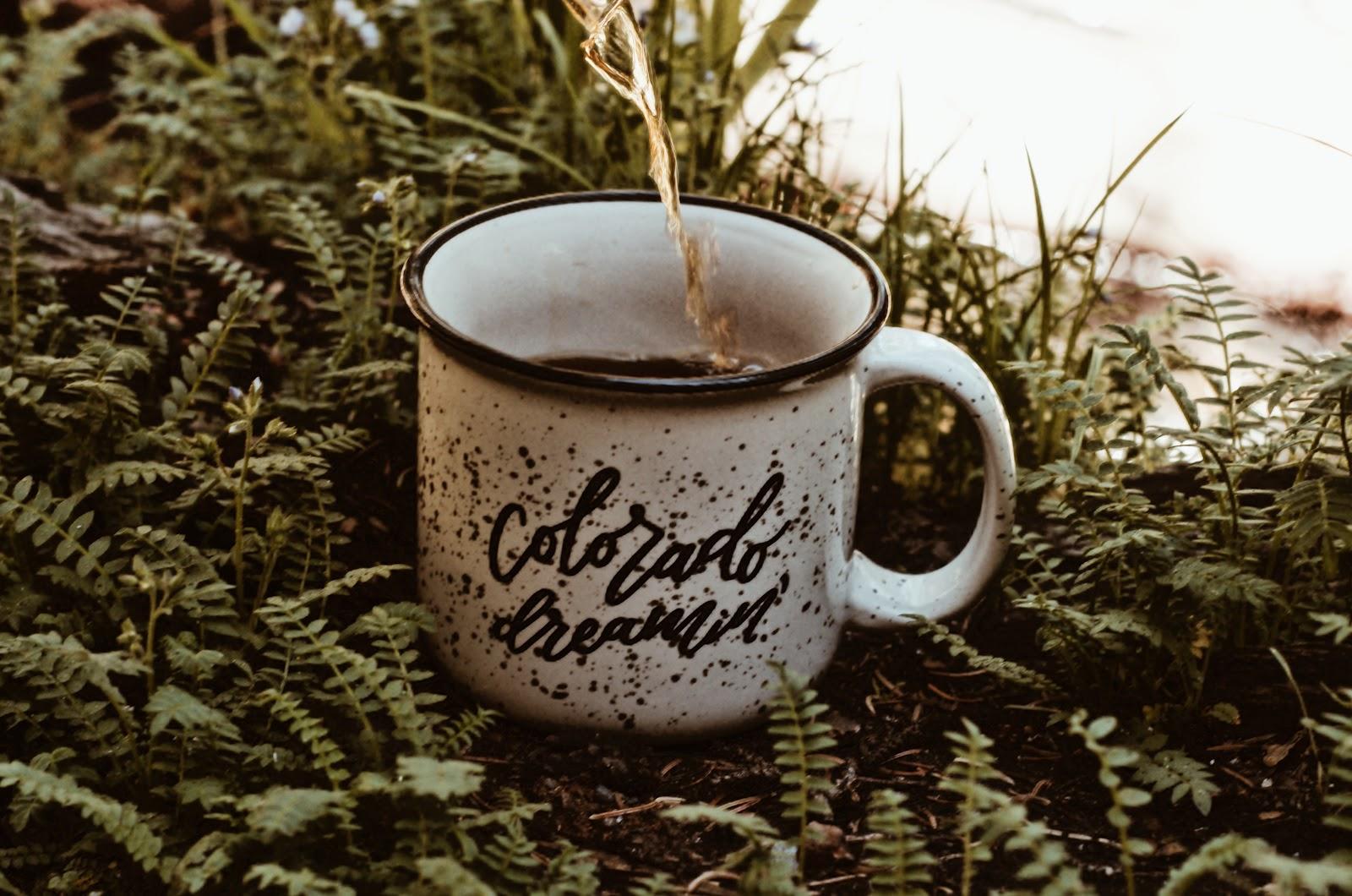 "Mug that says ""Colorado Dreamin'"""