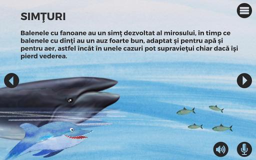 玩免費教育APP|下載Balene si delfini app不用錢|硬是要APP