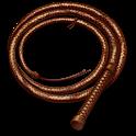 Whip! icon