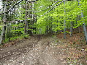 Photo: Szlak ogólnie łatwy, kilka stromych kamienistych zjazdów, ale większe trudności sprawiało błoto niż poziom ich trudności.