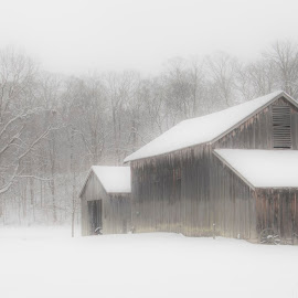 Snowed In by John Berry - Buildings & Architecture Other Exteriors