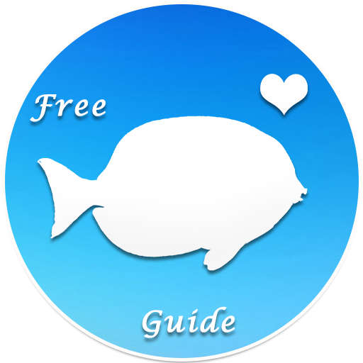 POF Free Dating APP + Tips For app (apk) free download for Android