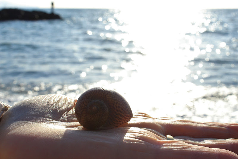 Il mare in una mano di valeria_scognamiglio