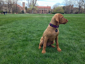 Photo: Checking out the campus grounds
