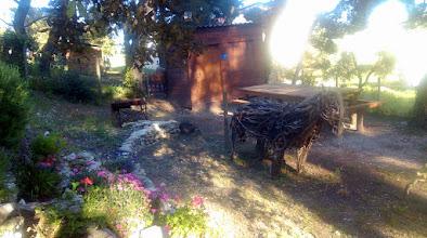 Photo: Aire de pique nique N°2 sous les pins