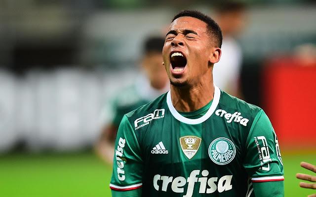 SE Palmeiras Tab
