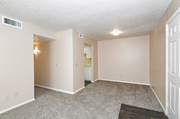 B1 living room with neutral walls and carpet