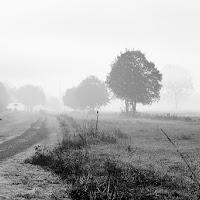 Sul dissolversi della nebbia di