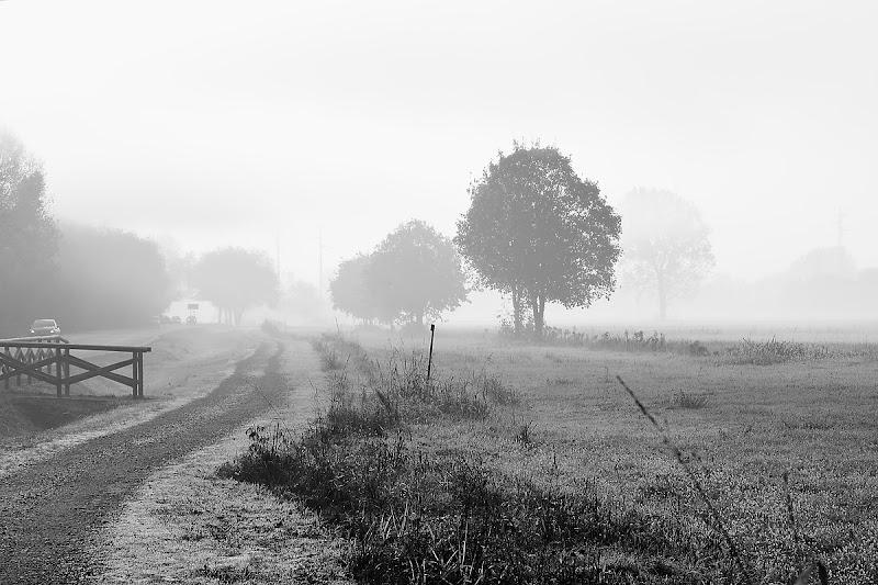 Sul dissolversi della nebbia di Luca Mandelli
