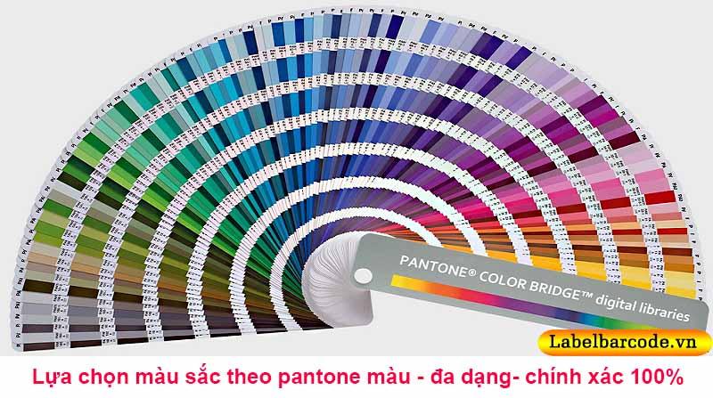 Bảng pantone màu chuẩn trong in ấn được An Thành sử dụng