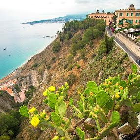 Taormina Scene by Kyle Kephart - Landscapes Travel ( nature, ship, sea, road, landscape, italy, city, cactus, sicily, taormina )