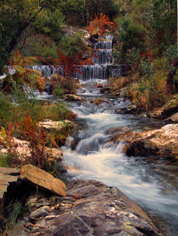 PAREDES by Ed  von Ems - Landscapes Waterscapes