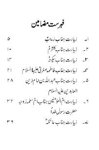 Sham ki Ziyaraat Offline - náhled