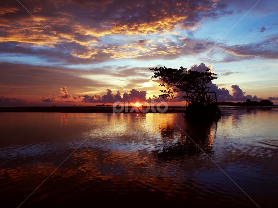 by Mohd Shahrizan Taib - Landscapes Weather ( water, sky, tree, zuiko lens, blue, 14mm, sea, tripod, sun )