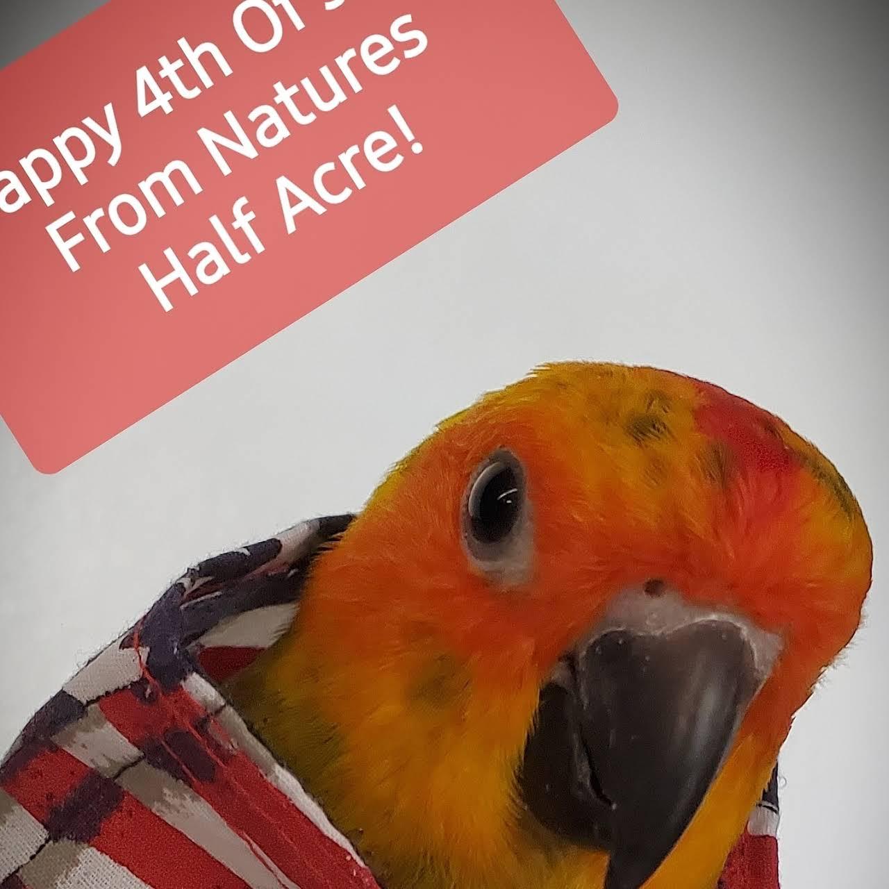 Nature's Half Acre Exoctic Pet Store - Pet Store in Wichita