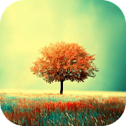 App Awesome-Land Live wallpaper HD : Grow more trees APK for Windows Phone