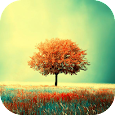 Awesome-Land Live wallpaper HD : Plant a Tree !! icon
