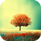 Awesome-Land Live wallpaper HD : Plant a Tree !!