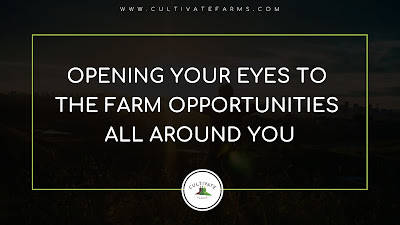 Opening your eyes to the farm opportunities all around you