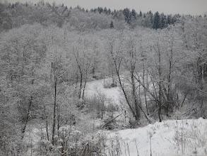 Photo: Склоны реки Даренка