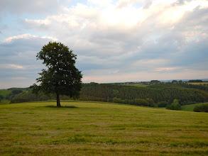Photo: EIAB Retreat, Waldbröl, Germany