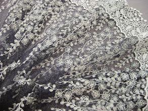 Photo: Кружево с вышивкой ш.100см.цена2000руб.                    Коллекция :Valentino