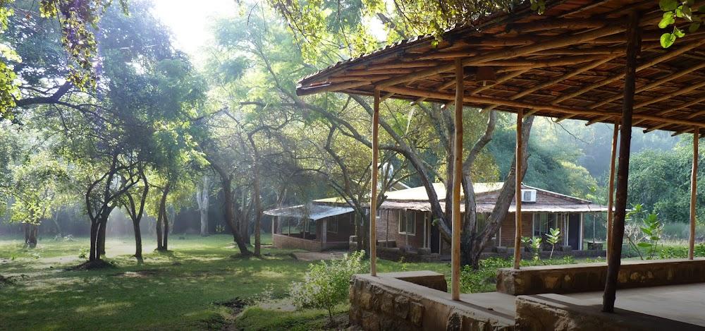 Jungle_Hut_Masinagudi