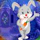 Download Best Escape Games 167 White Rabbit Escape Game For PC Windows and Mac