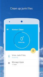 Norton Clean, Junk Removal 1