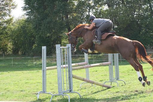 Cours d'équitation dans le Gers