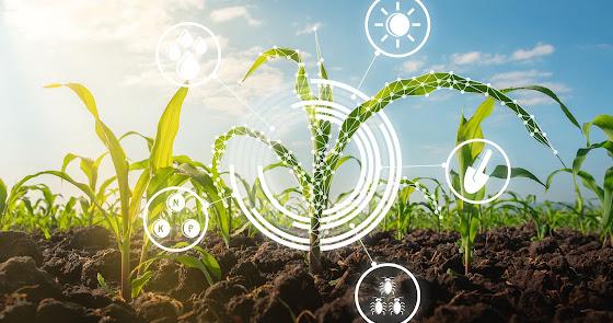 Hacia un Hub Agrotecnológico