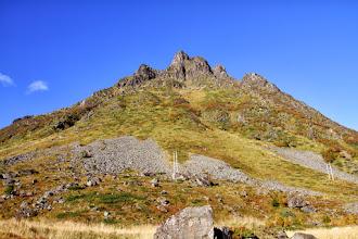 Photo: Schafe am Berg