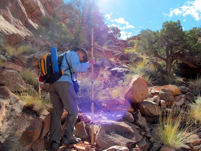 Climbing the rocky talus