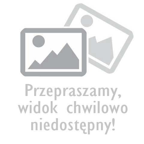 Krokus - Przekrój