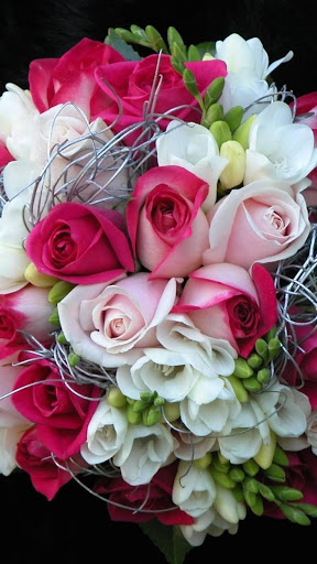 Rose Wallpaper, Floral, Flower Background: Rosely  screenshots 13