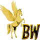 BeinWays icon