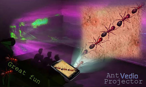 Ant Video Projector Prank