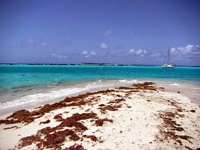 Photo: Horseshoe Reef & Petit Tabac