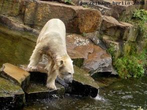 Photo: ... baden oder lieber nicht ?
